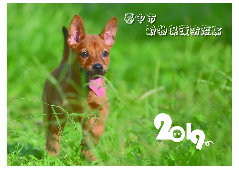 臺中市動物保護防疫處2019年桌曆(PDF檔案下載,另開視窗)