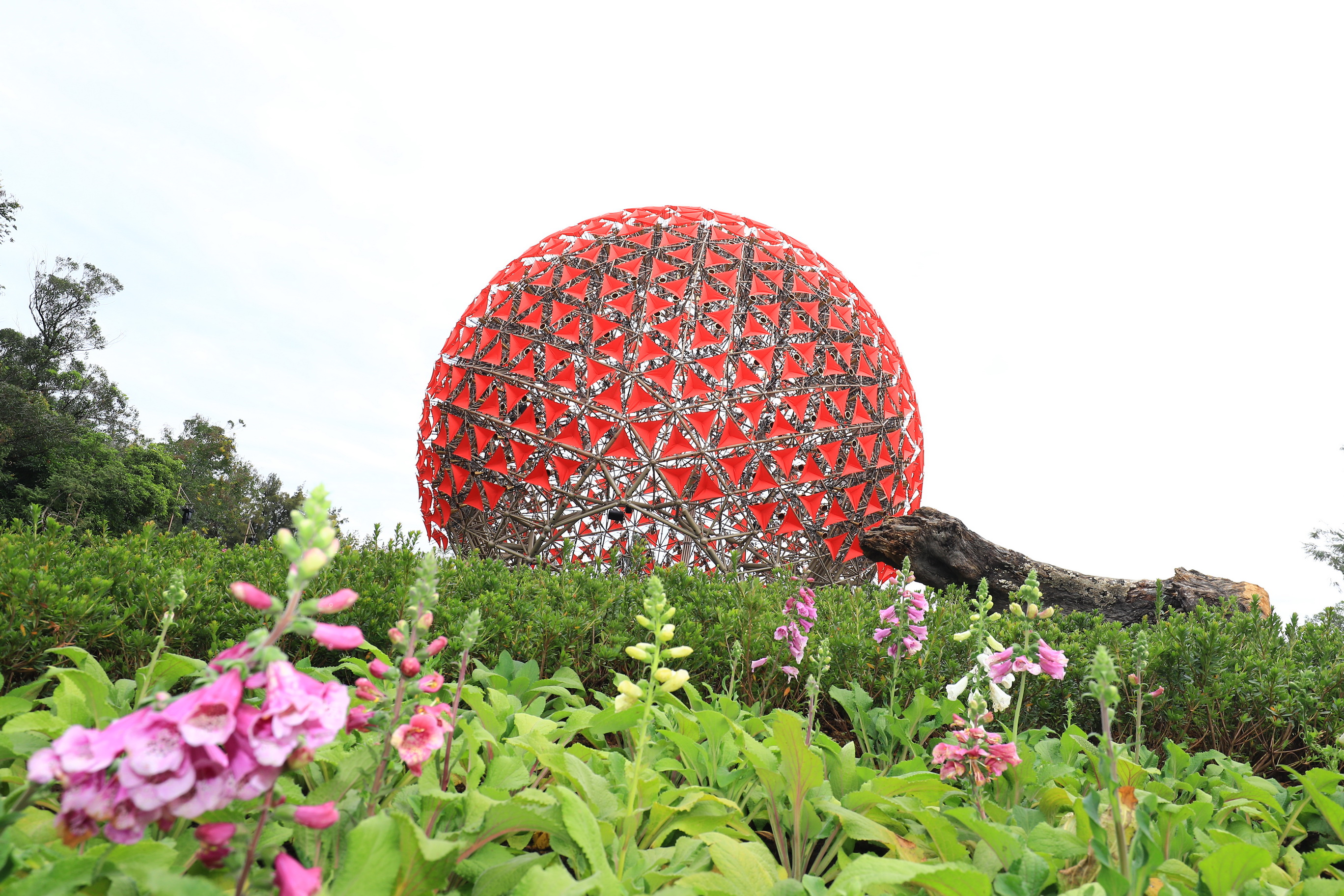 1 top of the world, 6 tops of Taiwan   The spotlights of Taichung Flora Expo you should never miss