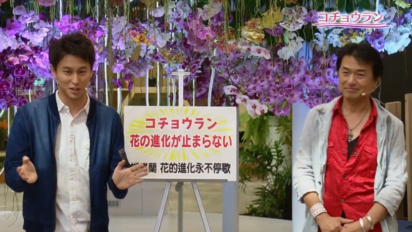 NHK《Interesting horticulture》has taken the overseas framing for the first time  To introduce the beauty of Taichung Flora Expo to Japanese