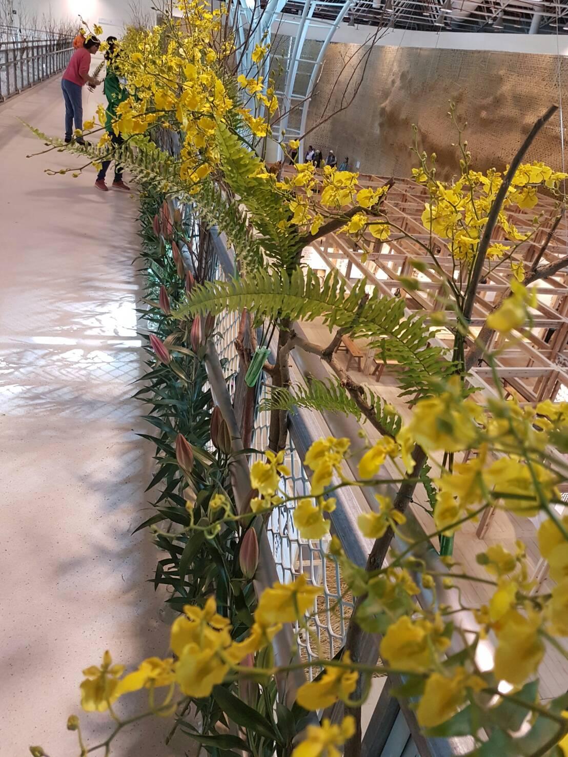 花博外埔園區「花の許願橋」 元月每周末邀民眾插花散播祝福